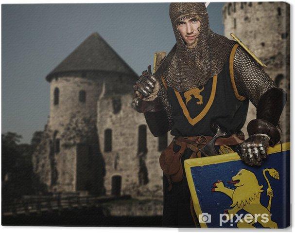 Ritarin keskiaikainen linna. Kangaskuva - Knights