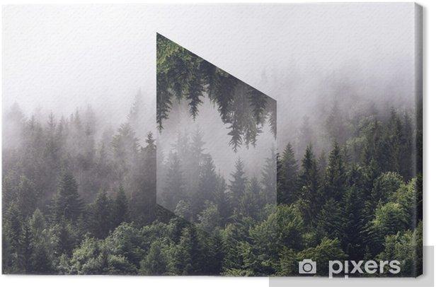 Sumuinen ikivihreä metsää käänteisellä monikulmella Kangaskuva - Graafiset Resurssit