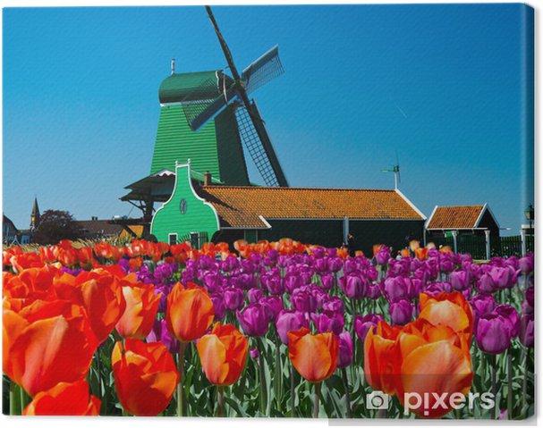 Tuulimylly hollannissa Kangaskuva - Mills and windmills