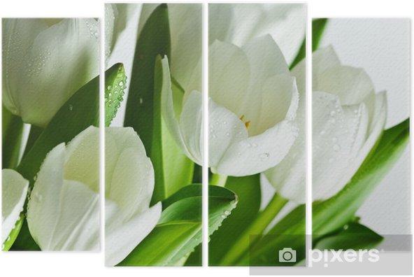 Kwadryptyk Białe tulipany - Tematy