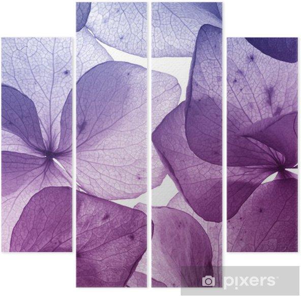 Kwadryptyk Kolorowy kwiat płatek zbliżenie - Tematy