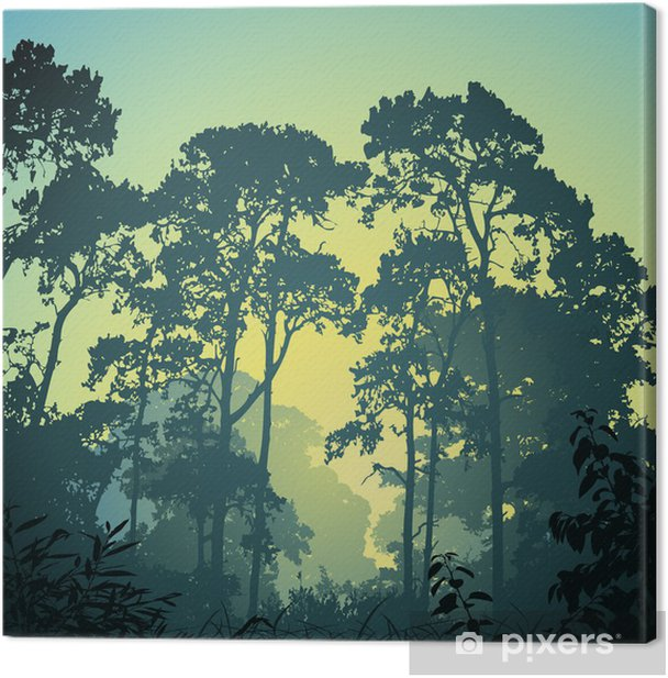 Leinwandbild A Forest Landschaft mit Bäumen und Sunset Sunrise - Themen