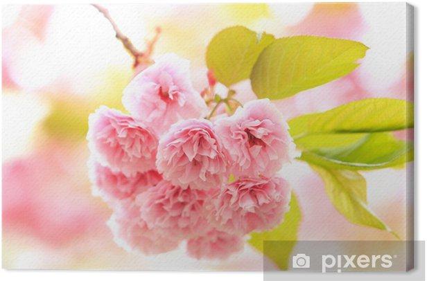 Leinwandbild Acht schwere Sakurai - Blumen