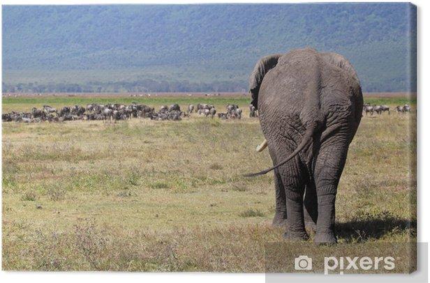 Leinwandbild Afrikanischer Elefant und Herde von Gnus - Themen