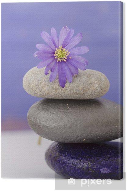 Leinwandbild Anemone und Rollen - Blumen