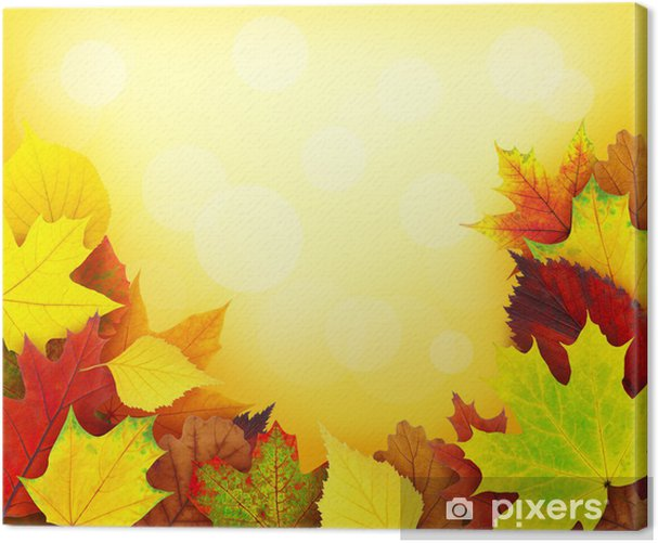 Leinwandbild Autumn leaves - Themen