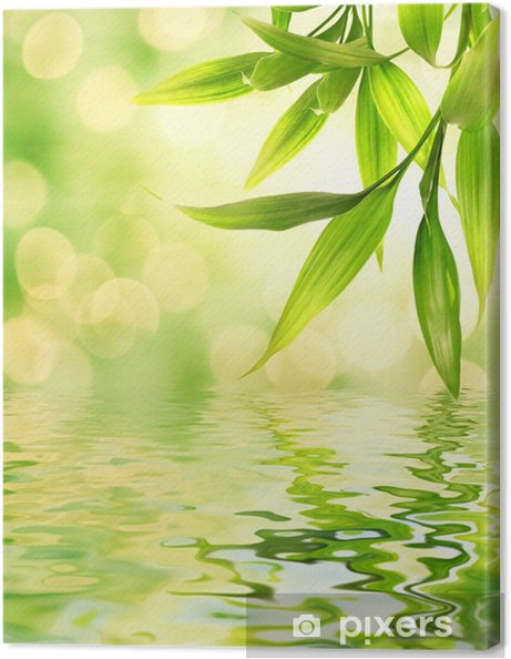 Leinwandbild Bambus-Blätter in gerenderten Wasser reflektiert - Themen