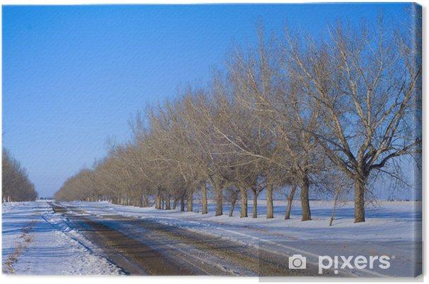 Leinwandbild Bäume in der Perspektive entlang einer Straße - Land