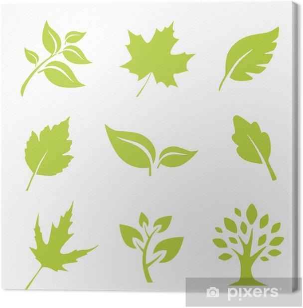 Leinwandbild Blätter - Haus und Garten