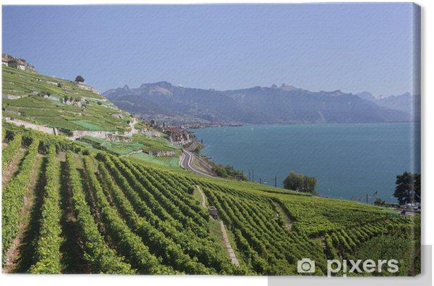 Leinwandbild Blick über den Genfer See von den Lavaux Weinreben. - Europa