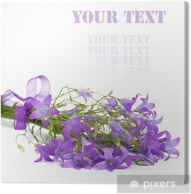Leinwandbild Campanula Blumen - Blumen