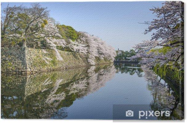 Leinwandbild Castle Outer Moat in Hikone, Japan - Asien
