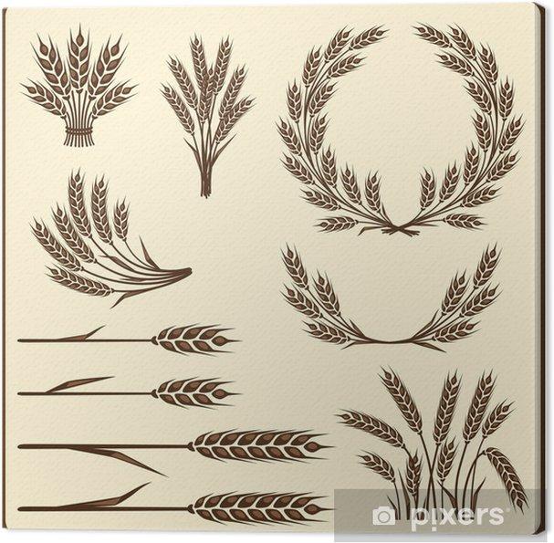 Leinwandbild Cereal Sammlung Elemente für Design. - Landwirtschaft