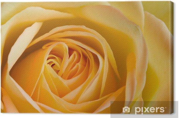 Leinwandbild Close up Bild von orange und gelbe Rose - Themen