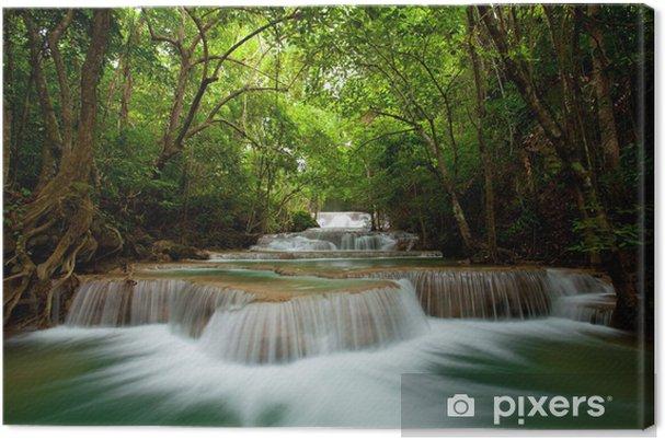 Leinwandbild Deep Forest Wasserfall - Themen