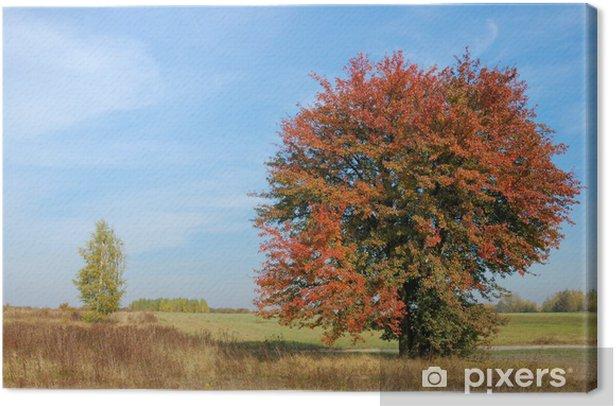 Leinwandbild Farben des Herbstes - Land
