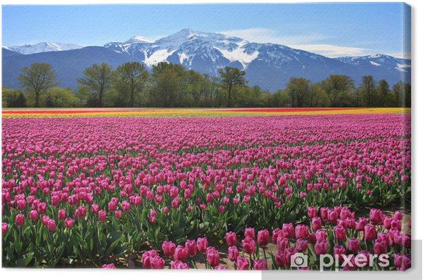 Leinwandbild Field of tulips - Themen
