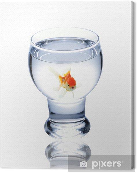 Leinwandbild Fisch im Glas trinken - Unterwasserwelt