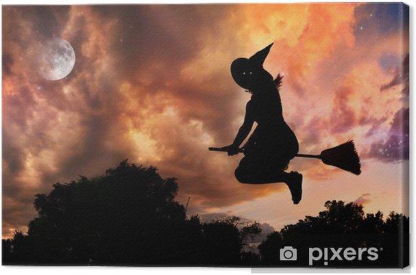 Leinwandbild Fliegende Hexe Auf Besen Pixers Wir Leben Um Zu
