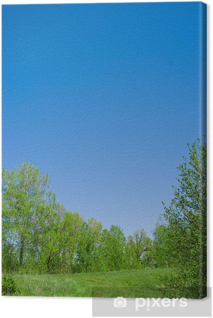 Leinwandbild Forst - Himmel