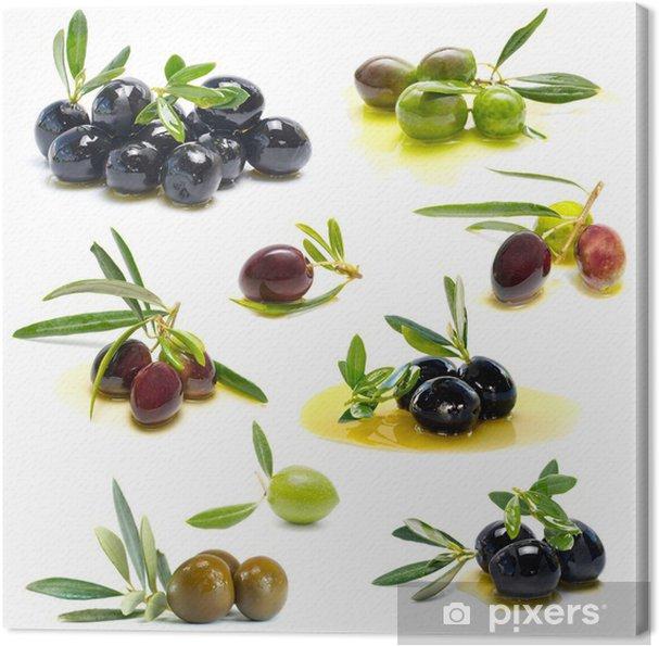 Leinwandbild Frische Oliven - Oliven