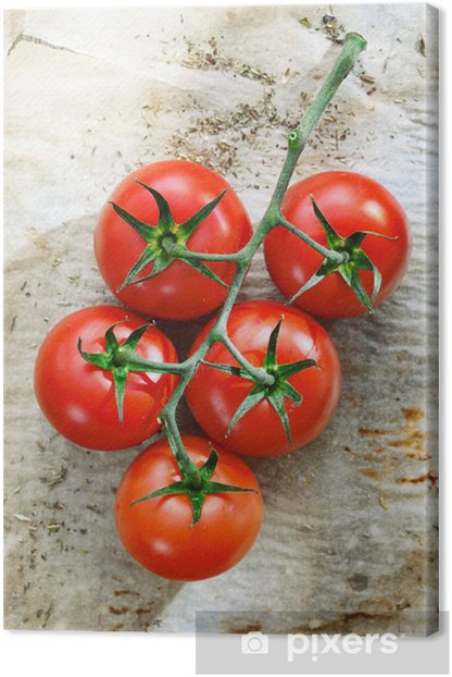 Leinwandbild Frische Tomaten auf zerknittertes Papier - Themen