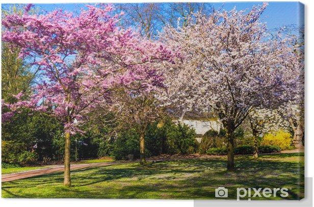 Leinwandbild Frühling Natur Hintergrund. Frühlingslandschaft - Jahreszeiten