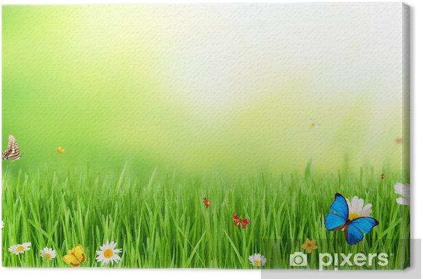 Leinwandbild Frühlingswiese - Andere Andere