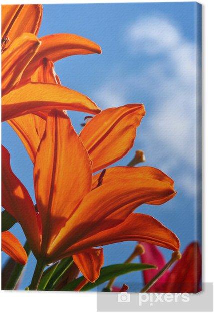 Leinwandbild Garten Lilien Pixers Wir Leben Um Zu Verändern