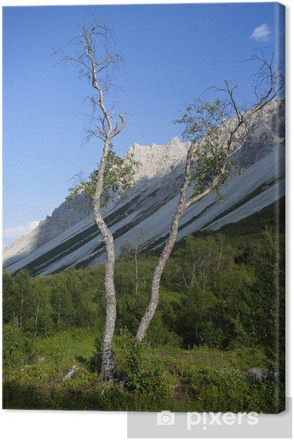 Leinwandbild Gebirgslandschaft Tirol - Berge