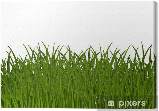 Leinwandbild Grass Hintergrund mit Platz für Text - Jahreszeiten