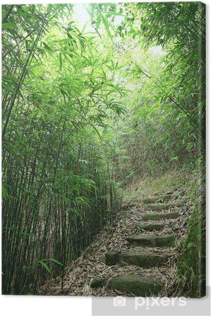Leinwandbild Green Bamboo Forest - ein Weg führt durch einen üppigen Bambuswald - Stadt