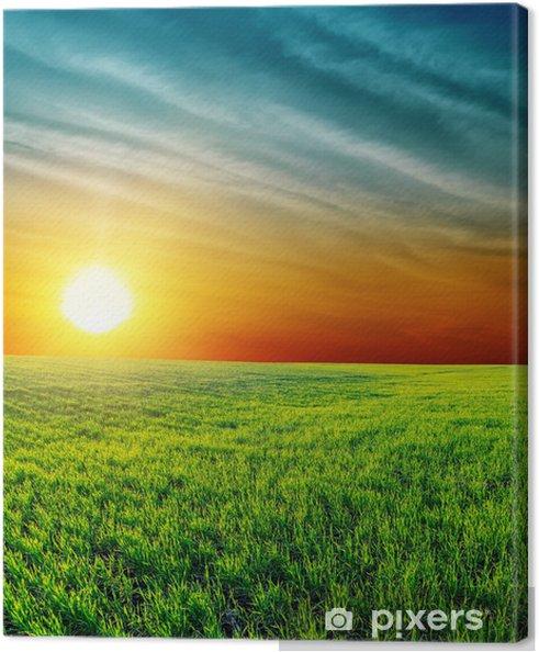 Leinwandbild Gute Sonnenuntergang über grüne Gras - Landwirtschaft