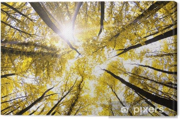 Leinwandbild Herbst - Jahreszeiten