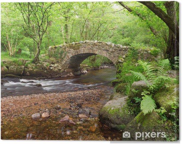 Leinwandbild Hisley Bridge, Hisley Holz, Dartmoor Devon Uk - Wasser