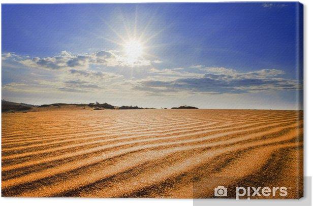 Leinwandbild Hot Sun unter Red Sand Dunes. - Asien