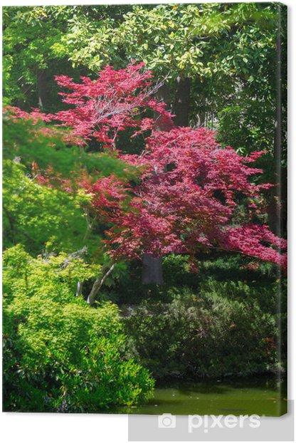 Leinwandbild Japanese garden - Bäume