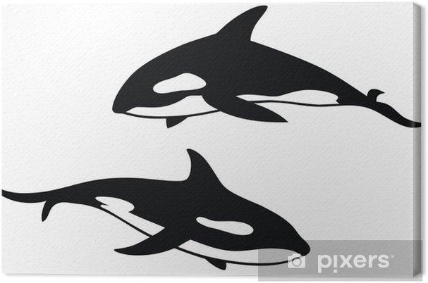 Leinwandbild Killer whale - Wandtattoo