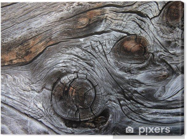 Leinwandbild Knorriges Holz - Holz mit Knoten - Texturen