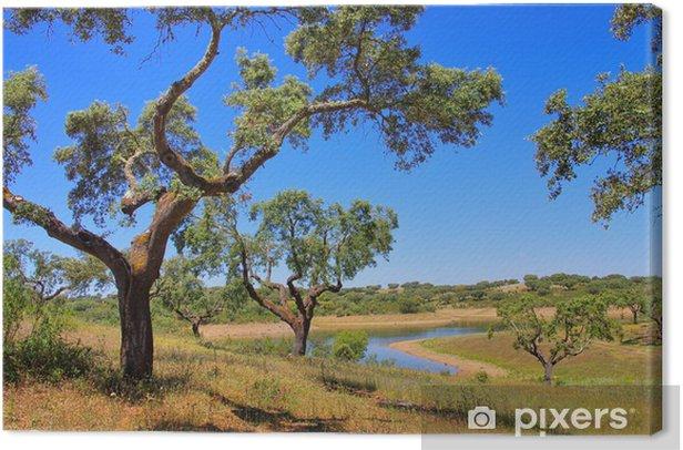 Leinwandbild Korkeiche - cork oak 58 - Europa
