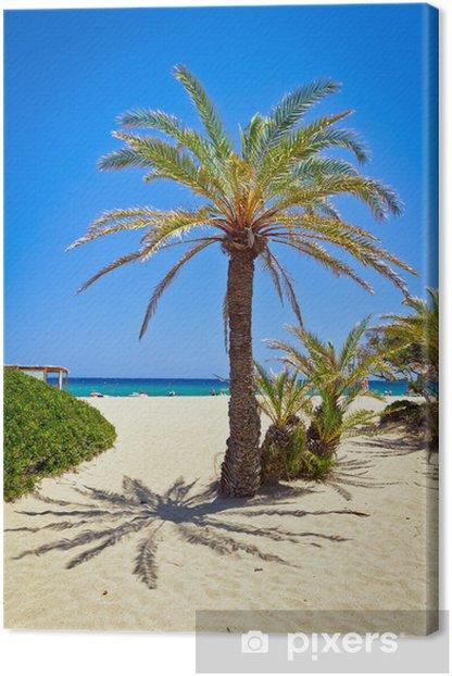 Leinwandbild Kretische Dattelpalme Baum auf idyllischen Vai Beach, Griechenland - Europa