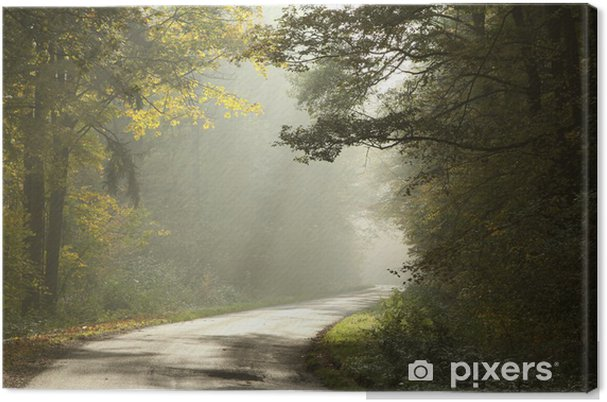Leinwandbild Landstraße durch den nebligen Herbstwald bei Sonnenaufgang - Wälder