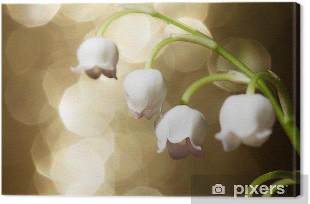 Leinwandbild Maiglöckchen - Pflanzen