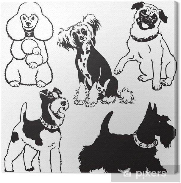 Leinwandbild Mit Hunden schwarz weiß gesetzt - Säugetiere