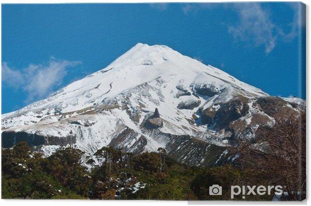 Leinwandbild Mount Egmont (Taranaki) - Naturwunder