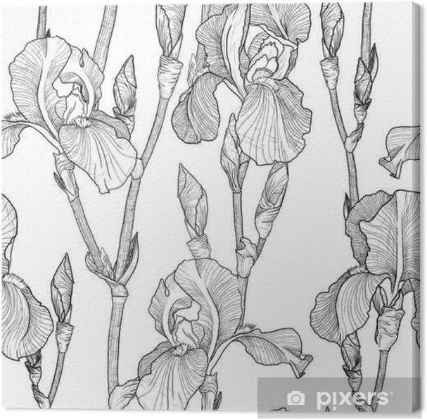 Leinwandbild Nahtlose Muster mit Schönen Iris-Blumen (schwarz und weiß) - Pflanzen und Blumen