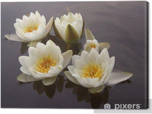 Leinwandbild Natur - Blumen