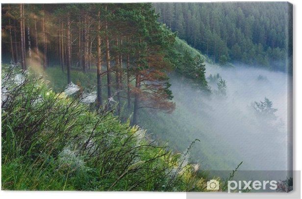 Leinwandbild Nebel auf dem Rand des Waldes - Wälder