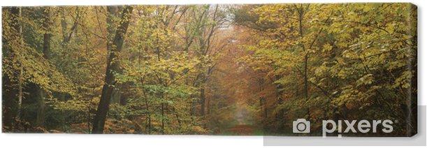 Leinwandbild Nebligen Morgen im Wald - Jahreszeiten