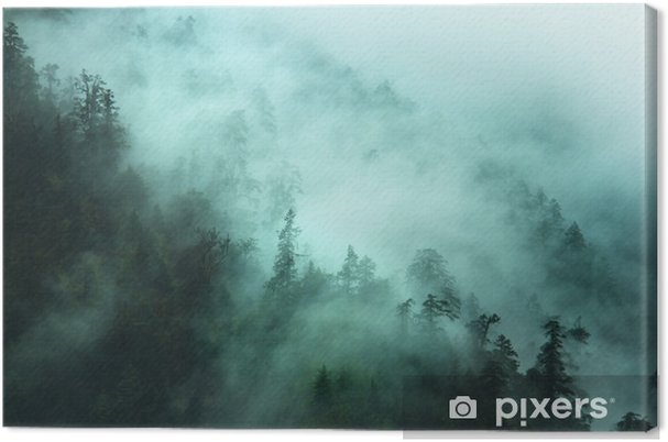Leinwandbild Nebligen Waldlandschaft in den Bergen - Berge